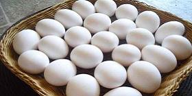 eggs-white-280x140